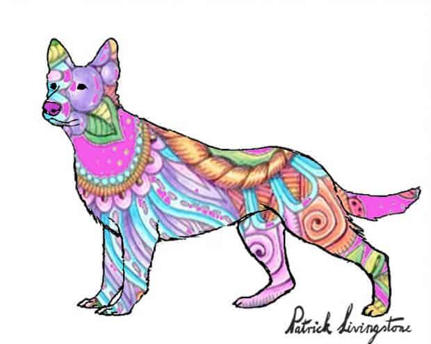 German Shepherd dog drawing colored e