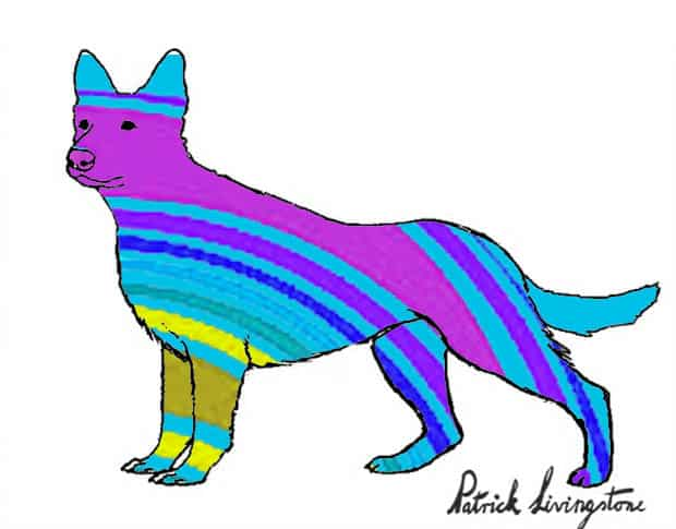 German Shepherd dog drawing colored n