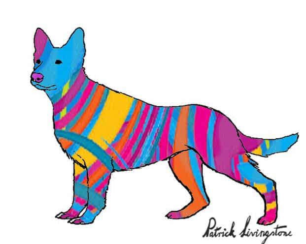 German Shepherd dog drawing colored w