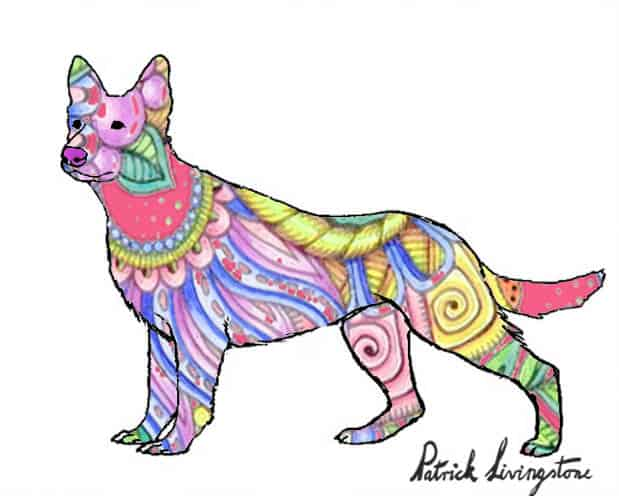 German Shepherd dog drawing colored z