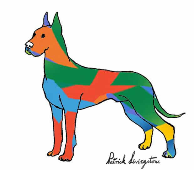 Great dane drawing colored modern art