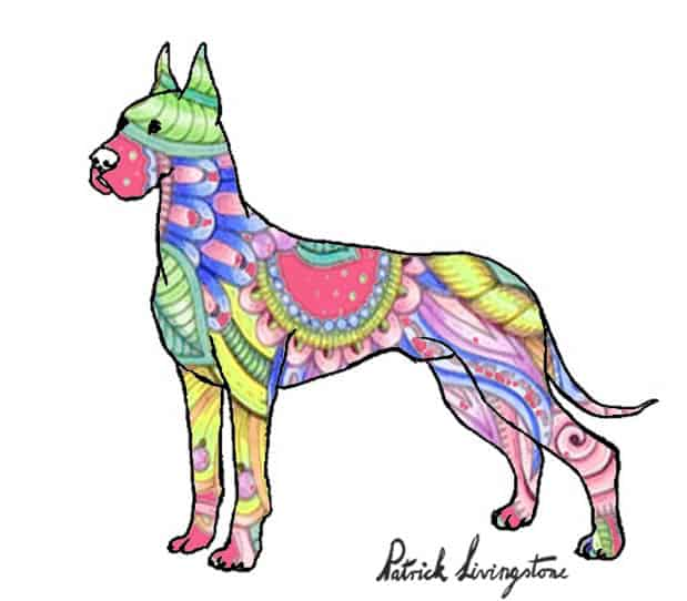 Great dane drawing colored paisley