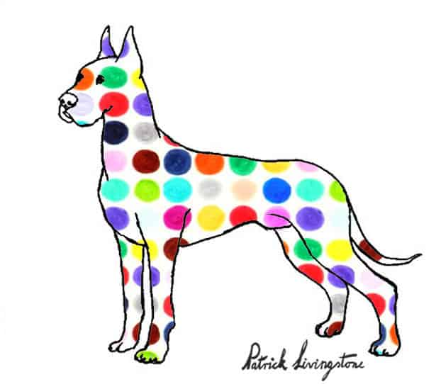 Great dane drawing colored spots