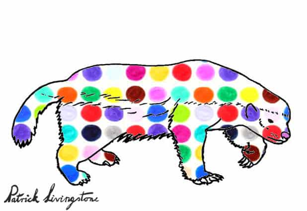 Honey Badger Drawing colored d
