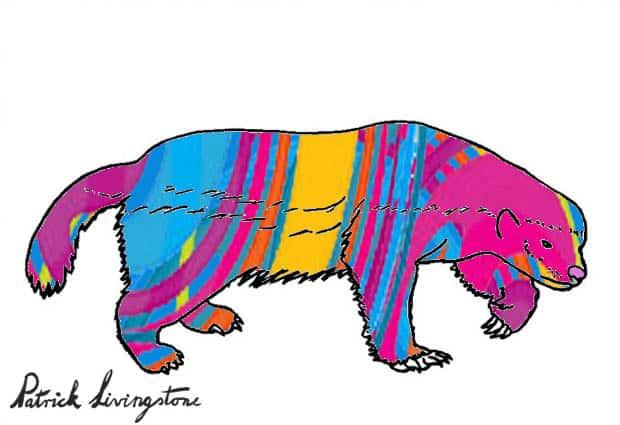 Honey Badger Drawing colored jk