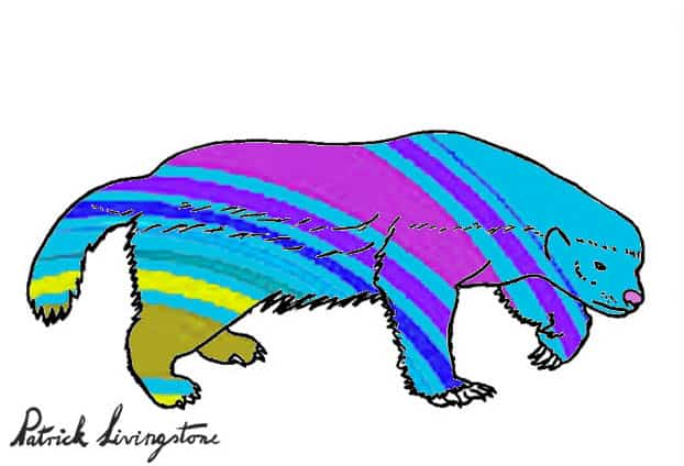 Honey Badger Drawing colored l