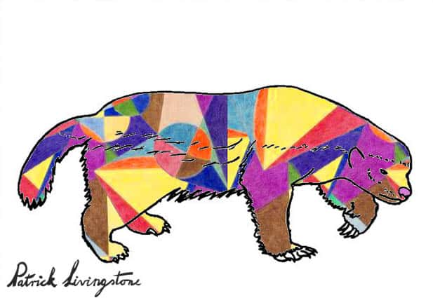 Honey Badger Drawing colored r