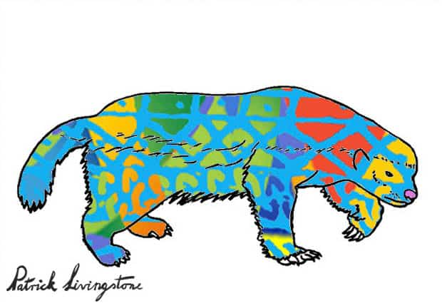 Honey Badger Drawing colored s
