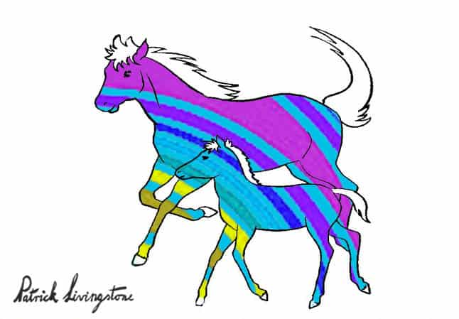 Horse and foal drawing colored k