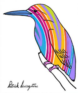 Kingfisher drawing colored 10