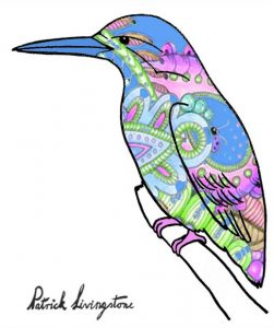 Kingfisher drawing colored 14