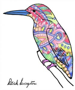 Kingfisher drawing colored -16
