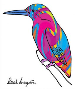 Kingfisher drawing colored 2