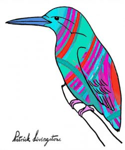 Kingfisher drawing colored 4