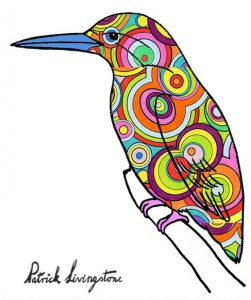 Kingfisher drawing colored 8