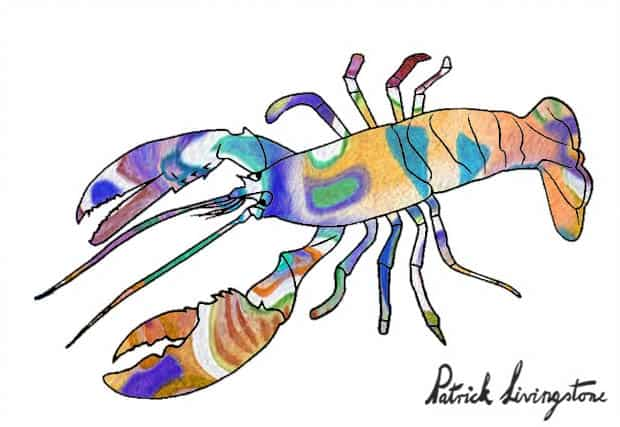 Lobster drawing colored i