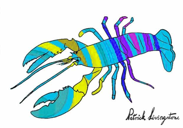 Lobster drawing colored k