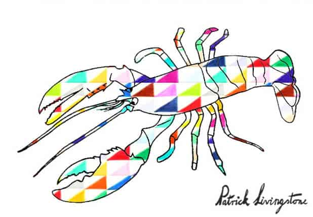 Lobster drawing colored y