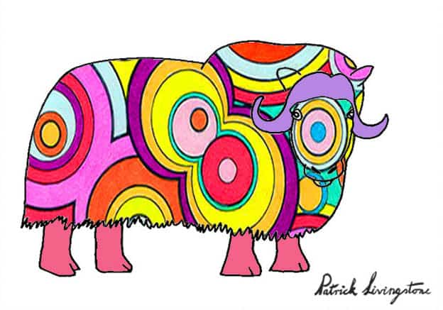 Musk ox drawing colored e