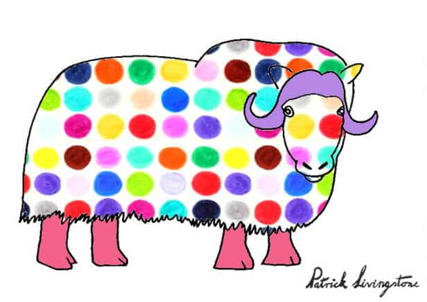 Musk ox drawing colored f