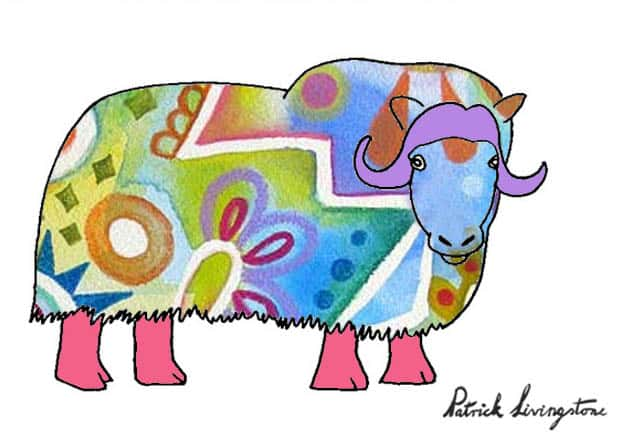 Musk ox drawing colored i