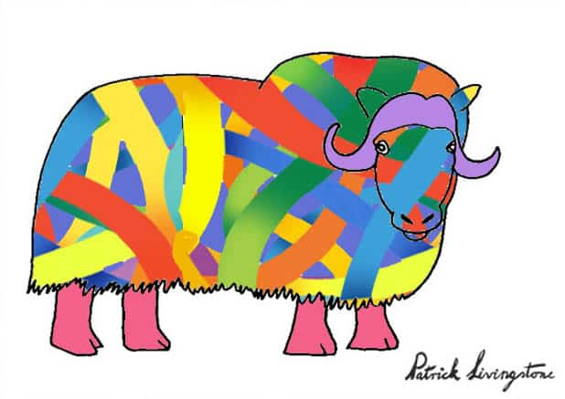 Musk ox drawing colored q