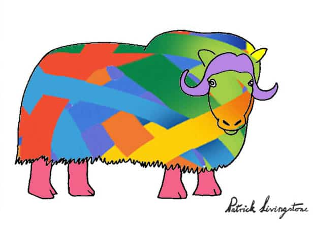Musk ox drawing colored t