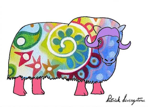 Musk ox drawing colored u