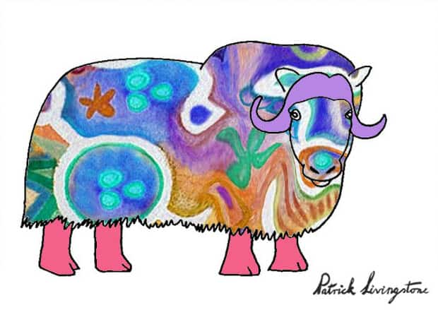 Musk ox drawing colored y