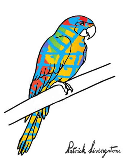 Parrot drawing colored a