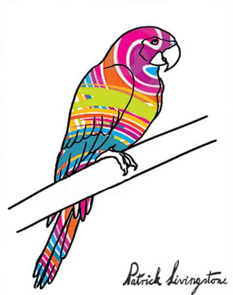 Parrot drawing colored d