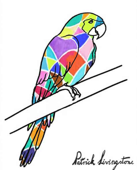Parrot drawing colored e