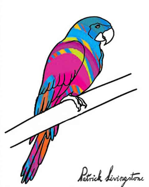 Parrot drawing colored g