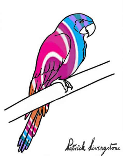 Parrot drawing colored i