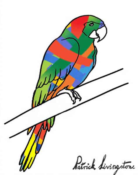 Parrot drawing colored o