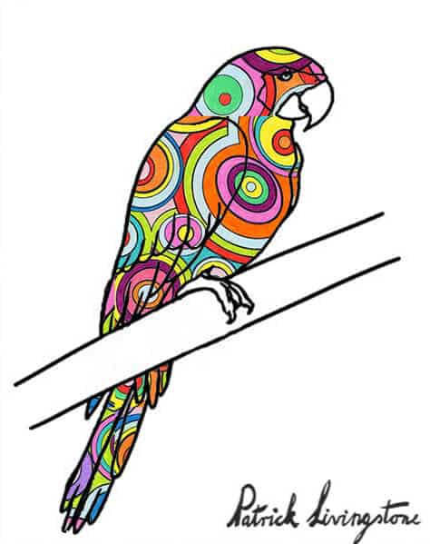 Parrot drawing colored p