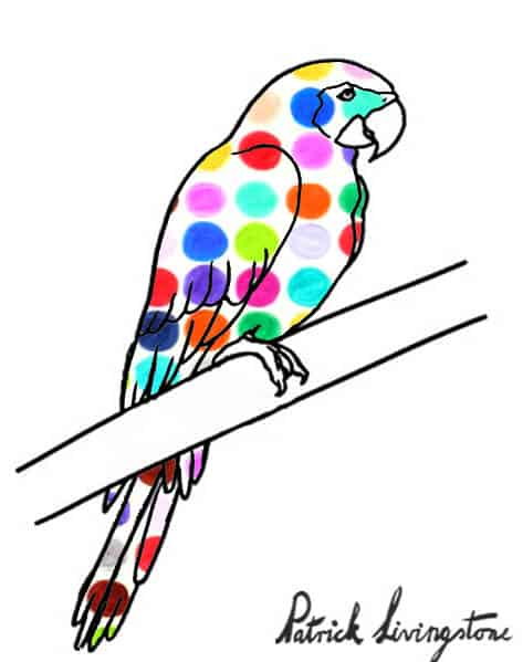 Parrot drawing colored s