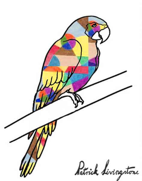 Parrot drawing colored u
