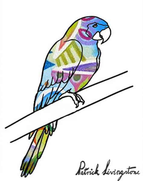 Parrot drawing colored y