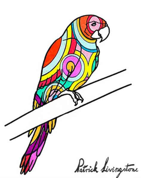 Parrot drawing colored z