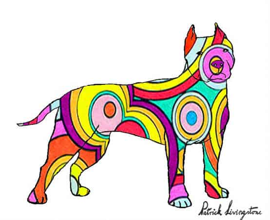 Pitbull terrier drawing colored 3