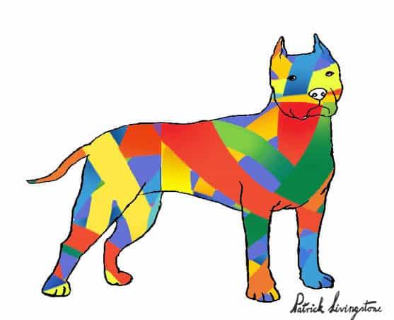 Pitbull terrier drawing colored u