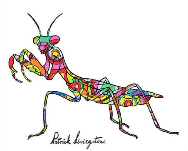 Praying Mantis drawing colored p