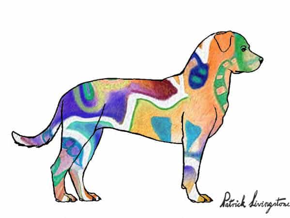 Rottweiler drawing colored r