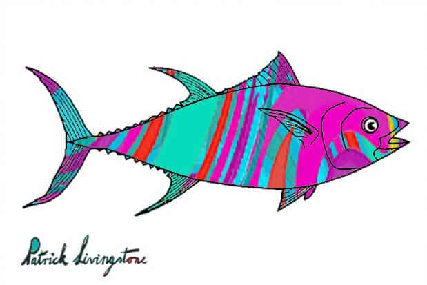 Tuna fish drawing colored h