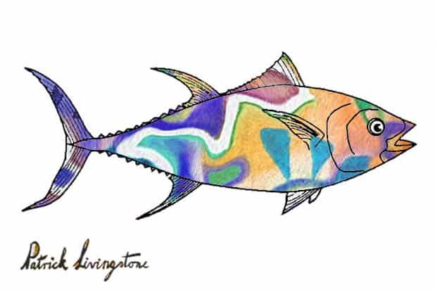 Tuna fish drawing colored i