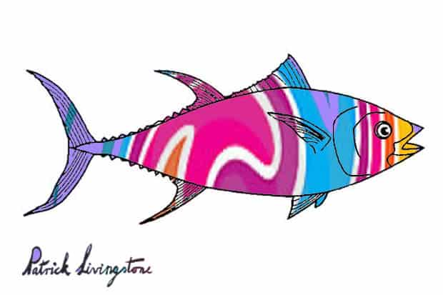 Tuna fish drawing colored s