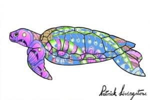 Turtle drawing colored blue