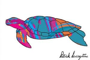 Turtle drawing colored wolly