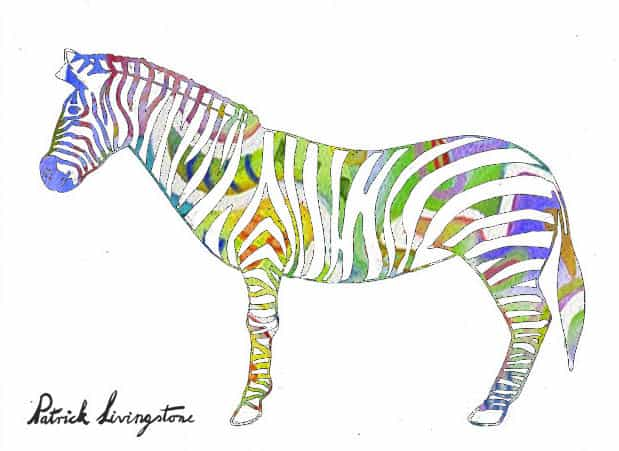 Zebra drawing colored